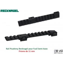 Rail Picatinny Recknagel...